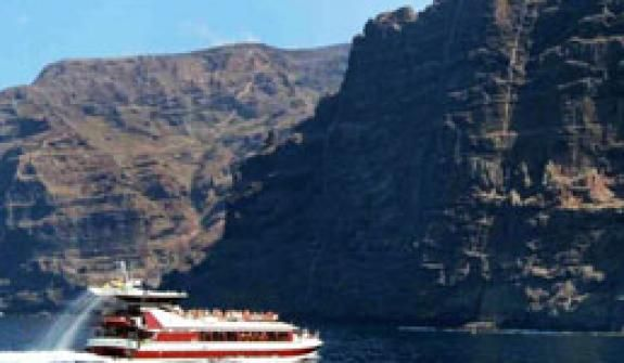 Whale watching: Whales and dolphins in Tenerife